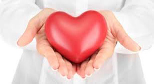Holter-pritiska-22.png